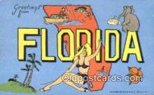 LLT200583 - Florida, USA Large Letter Town Postcard Post Card Old Vintage Antique