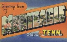 LLT200619 - Monteagle, TN, USA Large Letter Town Postcard Post Card Old Vintage Antique