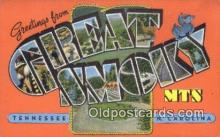 LLT200634 - Great Smoky Mts, TN, USA Large Letter Town Postcard Post Card Old Vintage Antique