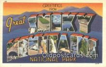 LLT200637 - Smoky Mountains, TN, USA Large Letter Town Postcard Post Card Old Vintage Antique