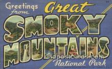 Great Smoky Mts, TN, USA Postcard Post Card