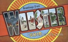 LLT200673 - Wooster, Ohio, USA Large Letter Town Postcard Post Card Old Vintage Antique