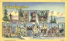 LLT201006 - New Hampshire USA Large Letter Town Vintage Postcard Old Post Card Antique Postales, Cartes, Kartpostal