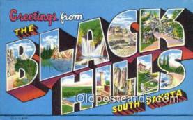LLT201129 - Black Hills, South Dakota USA Large Letter Town Vintage Postcard Old Post Card Antique Postales, Cartes, Kartpostal