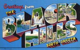 LLT201130 - Black Hills, South Dakota USA Large Letter Town Vintage Postcard Old Post Card Antique Postales, Cartes, Kartpostal