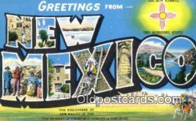 LLT201175 - New Mexico USA Large Letter Town Vintage Postcard Old Post Card Antique Postales, Cartes, Kartpostal