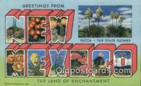 LLT201176 - New Mexico USA Large Letter Town Vintage Postcard Old Post Card Antique Postales, Cartes, Kartpostal
