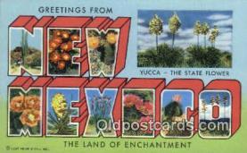 LLT201177 - New Mexico USA Large Letter Town Vintage Postcard Old Post Card Antique Postales, Cartes, Kartpostal
