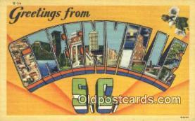 LLT201254 - Greenville, SC USA Large Letter Town Vintage Postcard Old Post Card Antique Postales, Cartes, Kartpostal