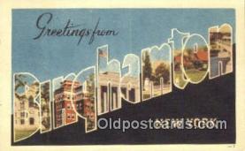 LLT201342 - Binghamton, New York USA Large Letter Town Vintage Postcard Old Post Card Antique Postales, Cartes, Kartpostal