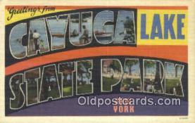 LLT201343 - Cayuga Lake State Park, New York USA Large Letter Town Vintage Postcard Old Post Card Antique Postales, Cartes, Kartpostal