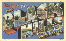 LLT201389 - Black Hills, South Dakota USA Large Letter Town Vintage Postcard Old Post Card Antique Postales, Cartes, Kartpostal