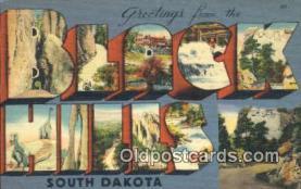 LLT201391 - Black Hills, South Dakota USA Large Letter Town Vintage Postcard Old Post Card Antique Postales, Cartes, Kartpostal