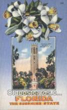 LLT201409 - Florida USA Large Letter Town Vintage Postcard Old Post Card Antique Postales, Cartes, Kartpostal