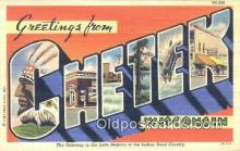 LLT201503 - Chetek, Wisconsin USA Large Letter Town Vintage Postcard Old Post Card Antique Postales, Cartes, Kartpostal