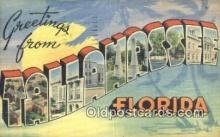 LLT201636 - Tallahassee, Florida USA Large Letter Town Vintage Postcard Old Post Card Antique Postales, Cartes, Kartpostal