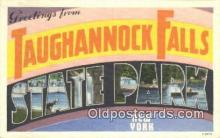 LLT201639 - Taughannulk Falls State Park, New York USA Large Letter Town Vintage Postcard Old Post Card Antique Postales, Cartes, Kartpostal