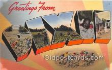 LLT300035 - Dixie  Postcard Post Cards