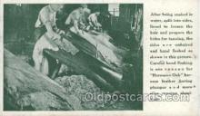 lea001005 - Hermann Oak St.Louis, tanning leather Leather Harness Postcard Postcards