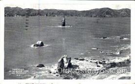 lgh001049 - Golden Gate, San Francisco, CA Light House, Houses Lighthouse, Postcard Postcards