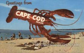 lob001004 - Cape Cod, Mass, USA Lobster Postcard Postcards