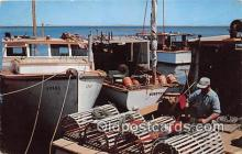 Cape Cod Lobsterman Baiting his Traps