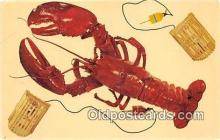 lob001087 - Cape Cod Lobster  Postcard Post Card