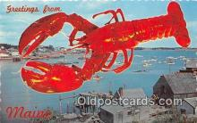 lob001093 - Greetings from Maine  Postcard Post Card