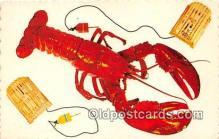 lob001095 - Homard Geant Lobster King Postcard Post Card