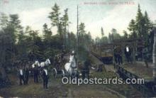 log001035 - Hauling Cord Wood to Track  Postcard Post Cards Old Vintage Antique