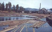 log001063 - Sawmill Washington, USA Postcard Post Cards Old Vintage Antique