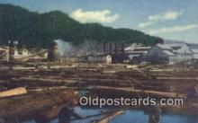 log001071 - Lumber Mill Redwood Empire, CA, USA Postcard Post Cards Old Vintage Antique