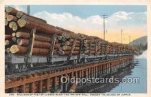 Millions of Feet of Lumber, Saw Mill
