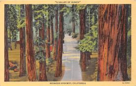 log001165 - Logs, Logging, Timber, Old Vintage Antique Postcard Post Card, Postales, Postkaarten, Kartpostal, Cartes, Postkarte, Ansichtskarte