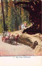 log001177 - Logs, Logging, Timber, Old Vintage Antique Postcard Post Card, Postales, Postkaarten, Kartpostal, Cartes, Postkarte, Ansichtskarte