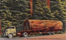 log001205 - Logs, Logging, Timber, Old Vintage Antique Postcard Post Card, Postales, Postkaarten, Kartpostal, Cartes, Postkarte, Ansichtskarte