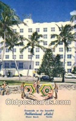 MTL001755 - Netherland Hotel, Miami Beach, FL, USA Motel Hotel Postcard Post Card Old Vintage Antique