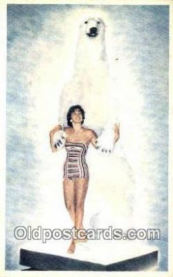 MTL001767 - Elko Travel Bureau, Salt Lake City, UT, USA Motel Hotel Postcard Post Card Old Vintage Antique
