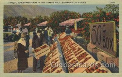 mns001002 - Orange Belt, Southern California, USA Main Steet Postcard Postcards