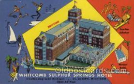 MTL001053 - Whitcomb Sulphur Springs Hotel, St. Joseph, Michican, USA Motel Hotel Postcard Postcards