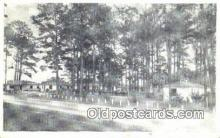 MTL001932 - Pine Grove Auto Court, Greenville, FL, USA Motel Hotel Postcard Post Card Old Vintage Antique