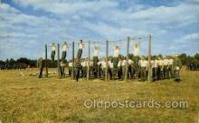mil007362 - physical training, Fort Dix, New Jersey Military Postcard Postcards