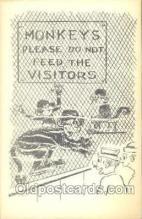 mky001017 - Monkey, Monkeys Postcard Postcards