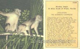 mky001047 - Monkey Jungle, Miami Florida USA, Monkey, Monkeys, Gorilla, Gorillas Postcard Postcards