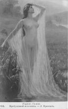 nud008251 - Nude Postcard