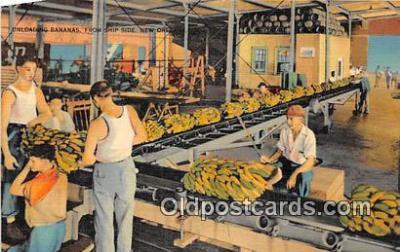 Unloading Bananas