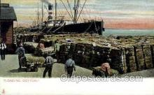ocp001002 - Loading Cotton, Occupational Postcard Postcards