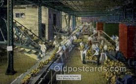 ocp001011 - Unloading Bananas, New Orleans, Louisiana, LA, USA
