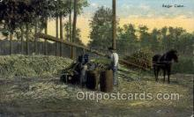 ocp001018 - Occupational Postcard Postcards