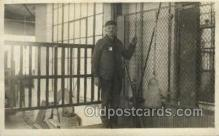 ocp001032 - Elevator Operator, Occupational Postcard Postcards
